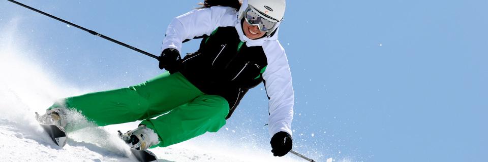 banner07 ari ski